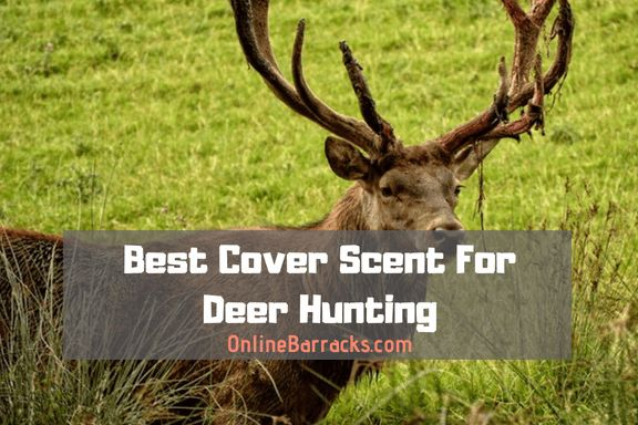 best-cover-scent-for-deer-hunting