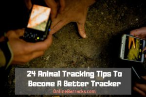 Animal Tracking Tips