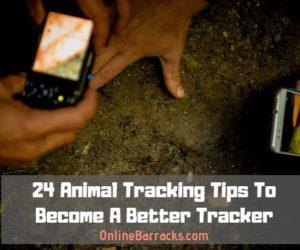 Animal Tracking Tips