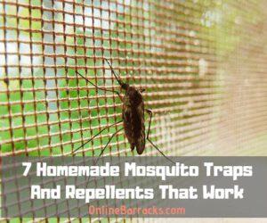 Homemade-mosquito-traps