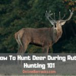 How To Hunt Deer During Rut
