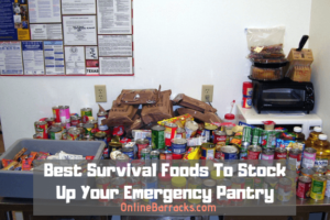 Best survival foods for prepping
