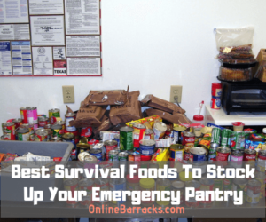 Best survival foods for prepping