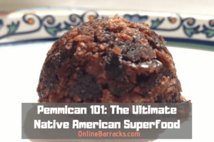 pemmican recipes and history
