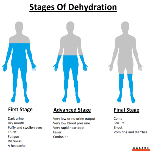 The stages of dehydration