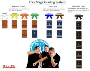 krav maga grading system