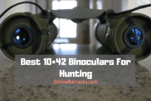 Best 10×42 Binoculars For Hunting