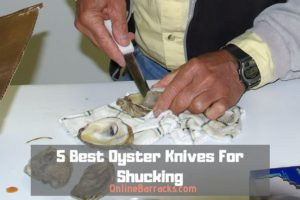 Best Oyster Knives For Shucking