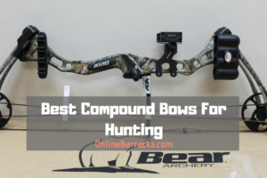 Best Compound Bows For Hunting