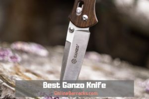 Best Ganzo Knife