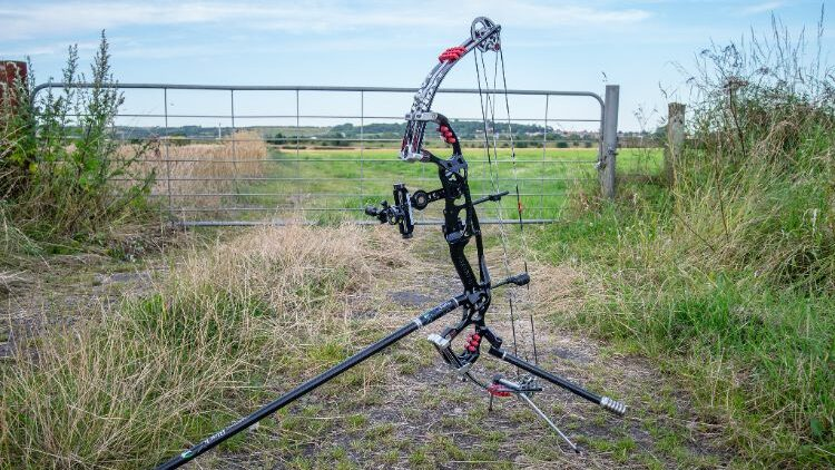 How To Choose The Right Compound Bow For Beginners?