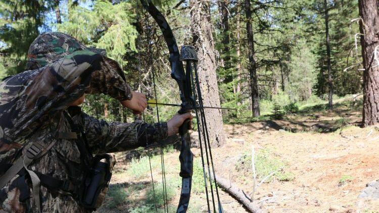 Best Recurve Bow For Deer Hunting