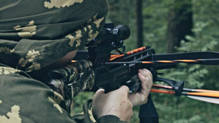 What To Expect From A $500 Crossbow