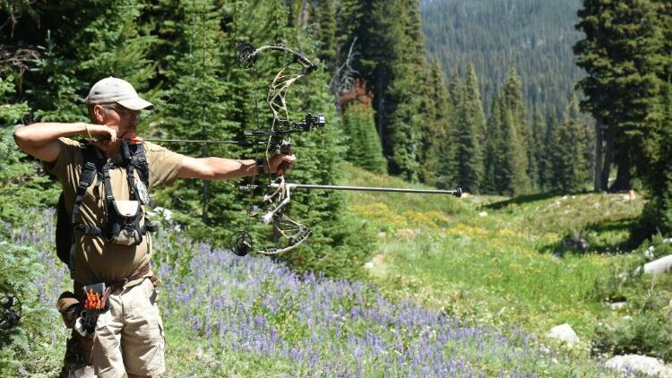 Best Bow Stabilizers For Accuracy