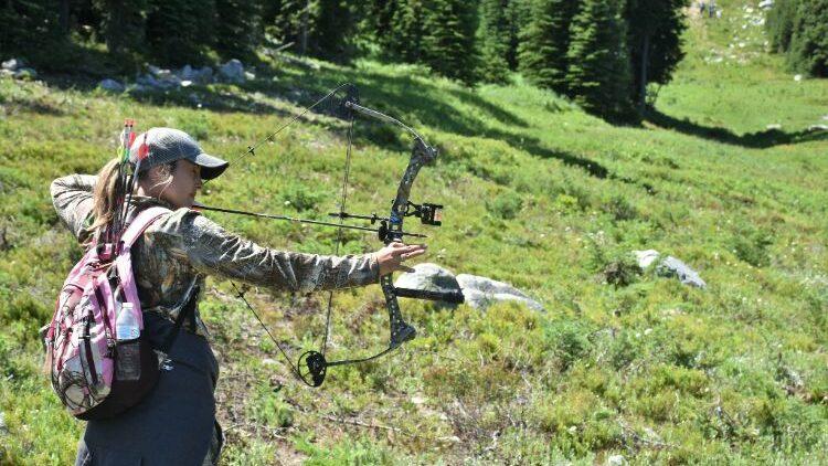 adjustable compound bows