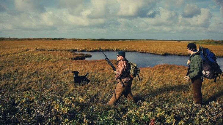 How To Choose The Best Hunting Glove