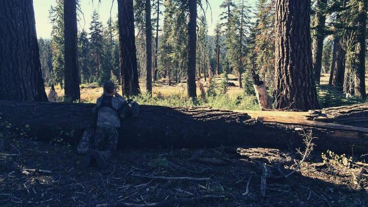 how to choose hunting bibs