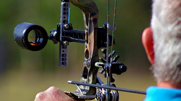 6 Best Single Pin Bow Sights For Increased Accuracy