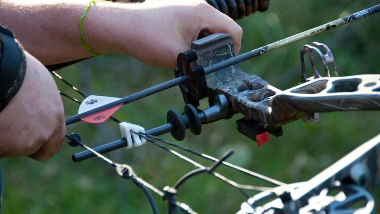 Types Of Bow Sights