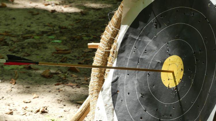 best arrows